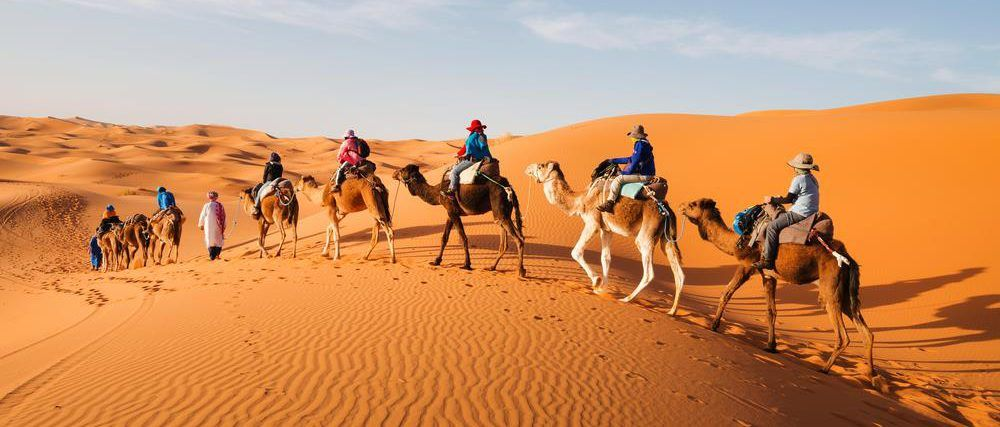 camel trek adventure tour