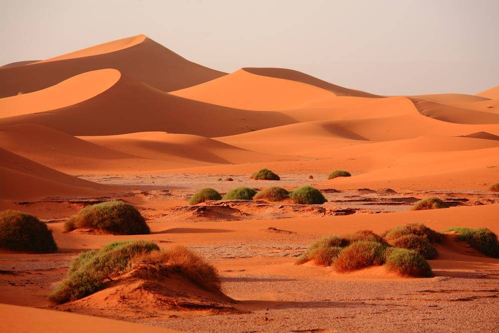 2 Days tour from Ouarzazate to Erg Chigaga Desert