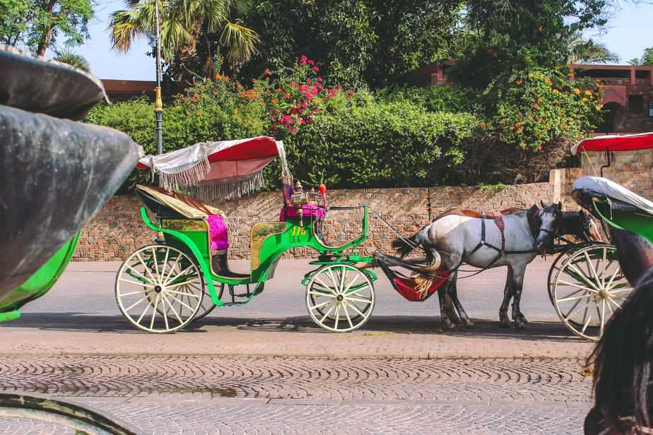 decorated horse-drawn carriages - Morocco